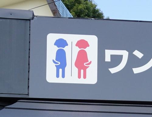 愛犬の駅トイレ