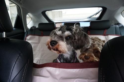ペット用座席カバー